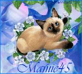 mamie45