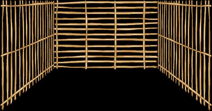 Taiti 5