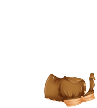 Furão Lagon