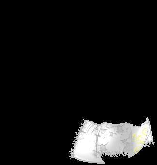 Furão Glace