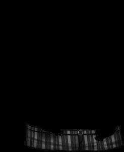 Criceto Sunlight