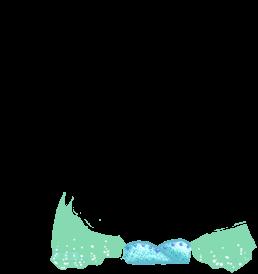 Criceto Asiatique