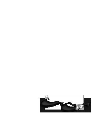 Marron et Blanc
