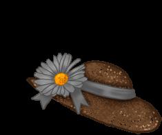 Abricot angora