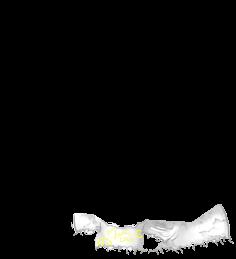 Mouse Marron rayé
