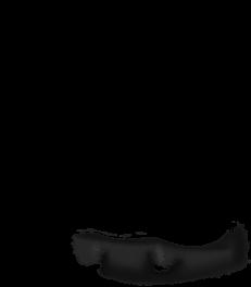 Mouse Beige et Noir