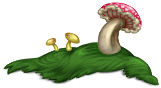 Cogumelo Grass 2 Floresta Encantada