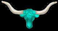 Cabeça de bisonte