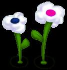 Flores da nuvem