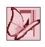 Papillon Pâques
