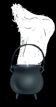 Chaudron Sorcière