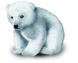 Urso Fada do Inverno