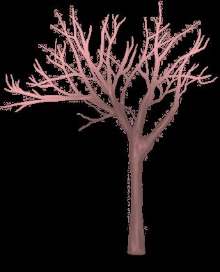 Árvore rena
