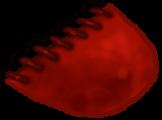 Pointe du pied