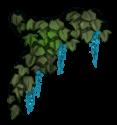 Flor elf
