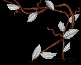 Planta de escalada