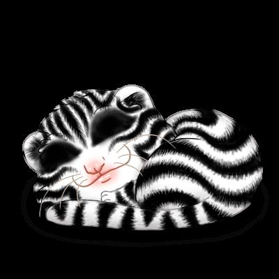 Adote um Furão Zebra