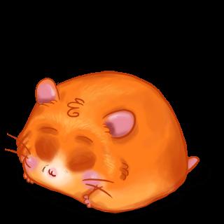Criceto Hamster Citrouille