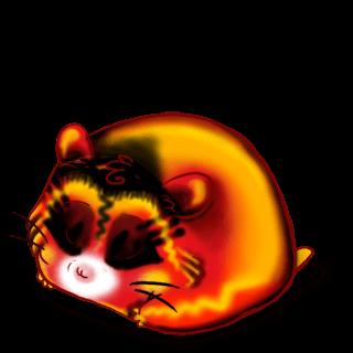 Adote um Criceto Panda Roux