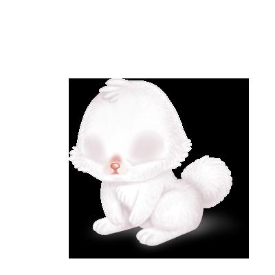 Adote um coelho Branco