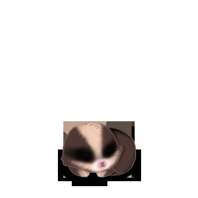 Adote um coelho Mandou