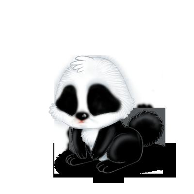 coelho Panda