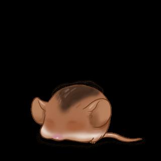 Mouse Caramelo