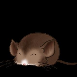Adote um Mouse Morcego