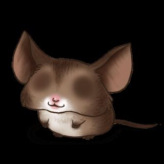 Mouse Chauve-Souris