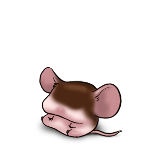 Adote um Mouse Chocolate