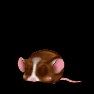 Chocolat au lait