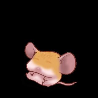 Adote um Mouse Damasco clássico