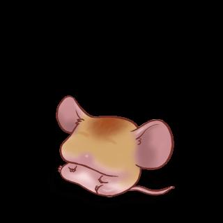 Adote um Mouse Casa