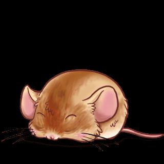 Adote um Mouse Chinês