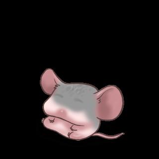 Mouse Prata
