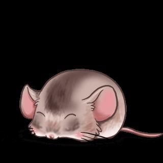 Mouse Classique