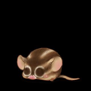 Adote um Mouse Esquilo