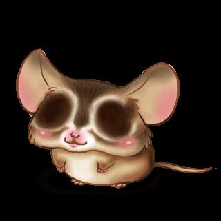 Mouse Esquilo