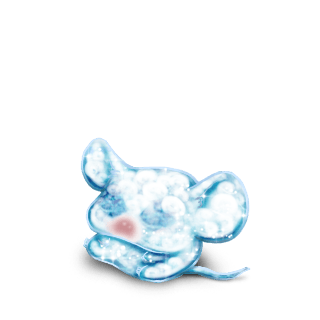 Adote um Mouse BeeMoov