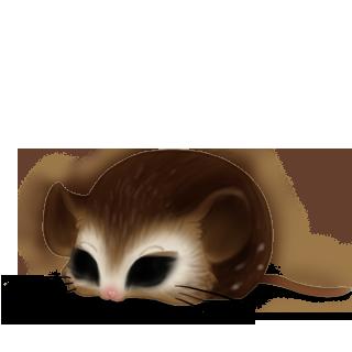Mouse Coruja