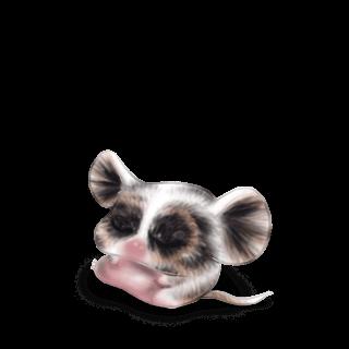 Adote um Mouse Iona