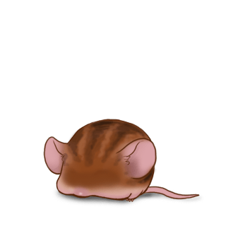 Adote um Mouse Marrom listrado