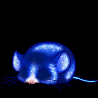 Mouse Paillettes
