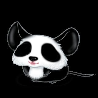 Mouse Panda