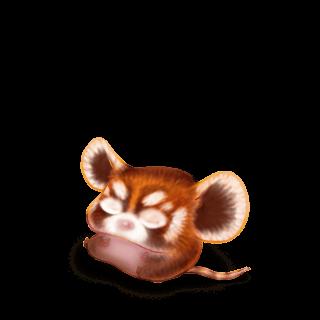 Adote um Mouse Panda Roux