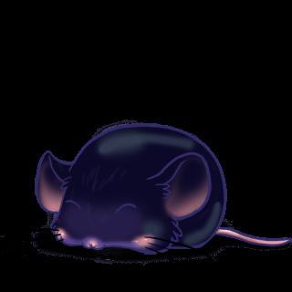 Adote um Mouse Rocha