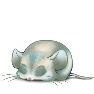 Mouse Ronard