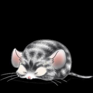 Adote um Mouse Coçar