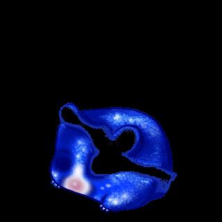 Criceto Irisor