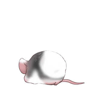 Mouse Miss
